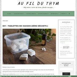 DIY - Tablettes WC maison (zéro déchets )