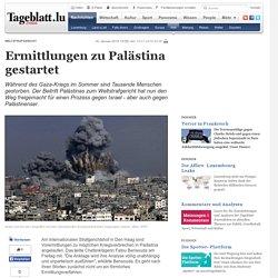 Ermittlungen zu Palästina gestartet - Welt