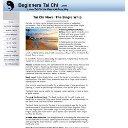 Tai Chi Move: Single Whip