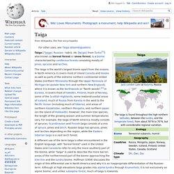 Taiga - Wikipedia