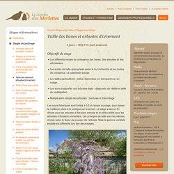 Taille des lianes et arbustes d'ornement