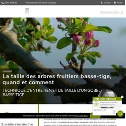 La taille des arbres fruitiers basse-tige - Quand et comment