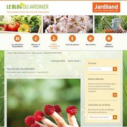 TAILLER LES FRAMBOISIERS - Le blog du jardinier
