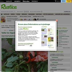 Tailler les légumes au potager