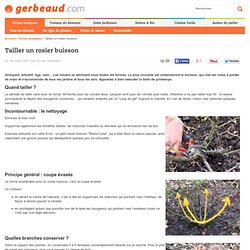 Taille pearltrees - Comment tailler un rosier buisson ...