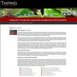 Taiping Institute - Tanglang Quan : 太平武馆 - 螳螂拳