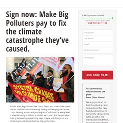 Take Action ! Sign now : Make Big Polluters pay to fix the climate catastrophe they've caused.