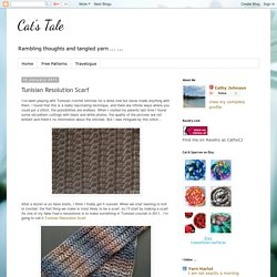 Cat's Tale: Tunisian Resolution Scarf