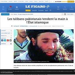 Les talibans pakistanais tendent la main à l'État islamique