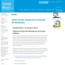 Taller Sector Salud en el convenio de Minamata