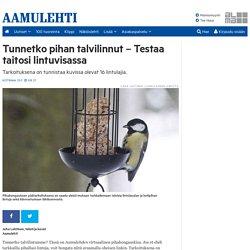 Tunnetko pihan talvilinnut - Testaa taitosi lintuvisassa - Aamulehti