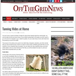 Tanning Hides at Home - Off The Grid News