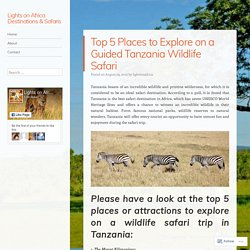 Top 5 Places to Explore on a Guided Tanzania Wildlife Safari