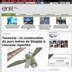 Tanzanie : la construction du parc éolien de Singida à nouveau reportée