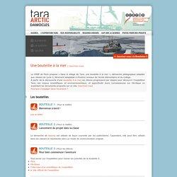 Tara arctic damocles