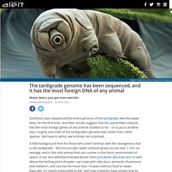 The tardigrade genome has been sequenced, and it has the most foreign DNA of any animal