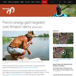 French energy giant targeted over Amazon dams