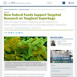 New Federal Funds Support Targeted Research on Toughest Superbugs