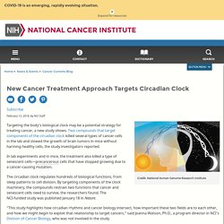 Targeting the Circadian Clock to Treat Cancer