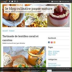 Tartinade de lentilles corail et carottes - le blog culinaire pause-nature