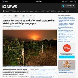 Tasmanian bushfires and aftermath captured in 'striking, horrible' photographs