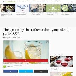 Gin Tasting Chart - Gin & Tonic Recipe