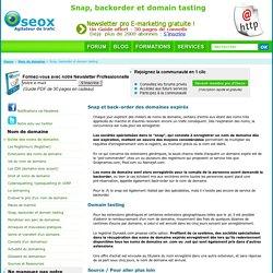 Snap, Back Order Et Domain Tasting. Comment Acheter Un Nom De Domaine Expiré - Non Renouvelé. Placer Un Backorder.