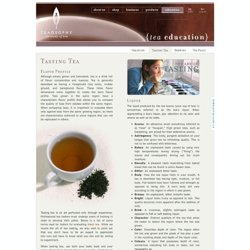 Tasting Tea | Teaosophy