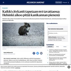 Kaikki citykanit tapetaan nyt tavattaessa: Helsinki aikoo pitää kanikannan pienenä - Kaupunki