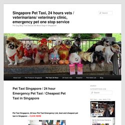Pet Taxi Singapore, 24 hour Emergency, Cheapest Pet TaxiSingapore Pet Taxi, 24 hours vets / veterinarians/ veterinary clinic, emergency pet one stop service