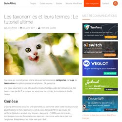 Les taxonomies et leurs termes : Le tutoriel ultime – BoiteAWeb