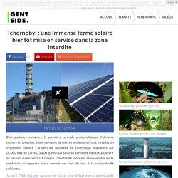Tchernobyl : une immense ferme solaire bientôt mise en service dans la zone interdite