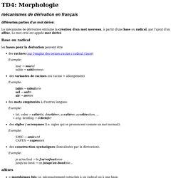 TD4: Morphologie