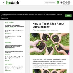 How to Teach Kids About Sustainability