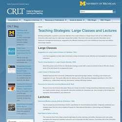Teaching Strategies: Large Classes and Lectures