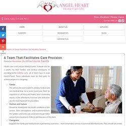 A Team That Facilitates Care Provision
