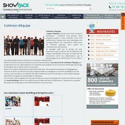 Cohésion d'équipe, Séminaire Atelier cohésion - Teambuilding Entreprise