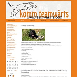 www.teamwaerts.com – Hundezentrum Siegerland » Neues