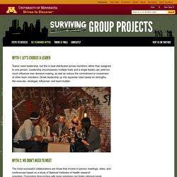 Surviving your group project