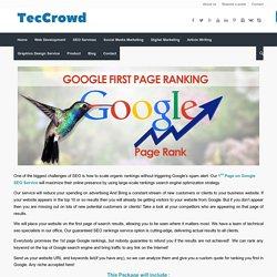 1st Page on Google SEO Service