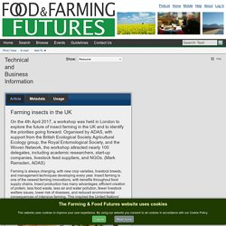 FOOD AND FARMING FUTURES - 2017 - Farming insects in the UK