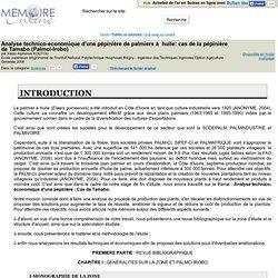 MEMOIRE ONLINE - Analyse technico-economique d'une pepinière de palmiers à huile: cas de la pepinière de Tamabo (Palmci-Irobo)