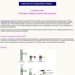 L ANALYSE FISH : TECHNIQUE RAPIDE DE DIAGNOSTIC PRENATAL