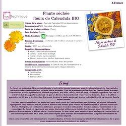 Fiche technique Extrait de plante : Fleurs de Calendula BIO