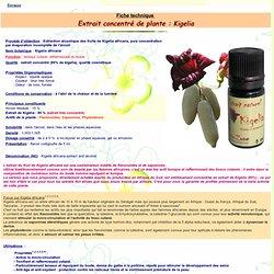 Fiche technique : extrait concentré de KIGELIA Aroma-Zone