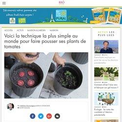 Voici la technique la plus simple au monde pour faire pousser ses plants de tomates