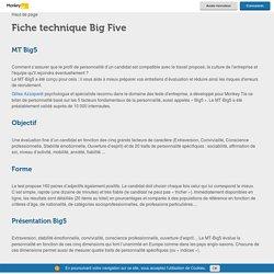Fiche technique Big Five ( les 5 traits de Personnalité ) - Monkey tie