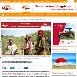 Les techniques agroécologiques africaines - AgriMaroc.ma