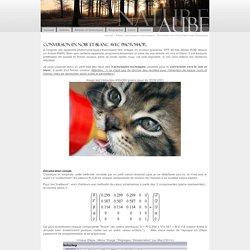 Aube Nature - Techniques de conversion noir et blanc sous Photoshop