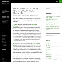 Encounter with The Best Techniques of Dog Training